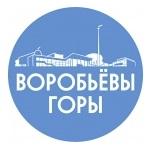 ГБПОУ г.Москвы «Воробьевы горы»